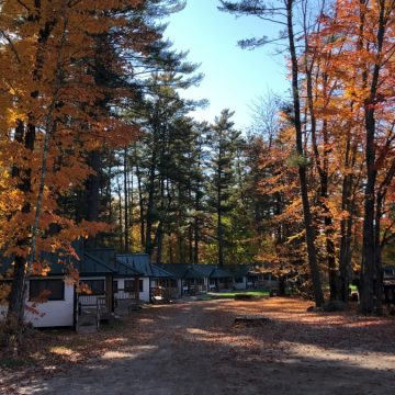 Seasons change and create growth at camp and in life.